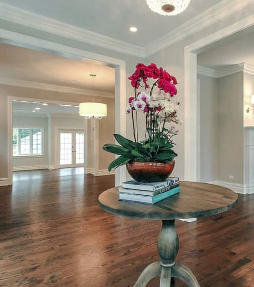 Foyer design with family room and patio project photo in Wilmette